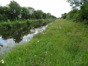 Grand Canal Barrow Line